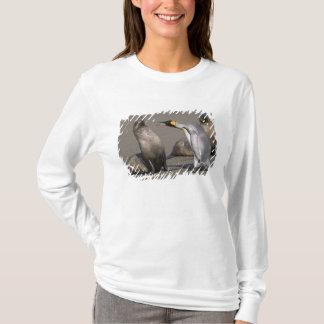 Antarctica, South Georgia Island (UK), King 3 T-Shirt