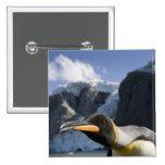 Antarctica, South Georgia Island UK), King 4 15 Cm Square Badge