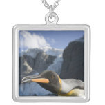 Antarctica, South Georgia Island UK), King 4 Square Pendant Necklace