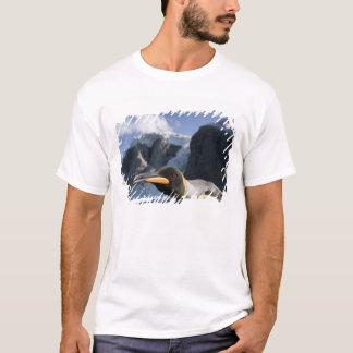Antarctica, South Georgia Island UK), King 4 T-Shirt