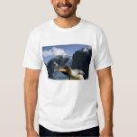 Antarctica, South Georgia Island UK), King 4 Tshirt