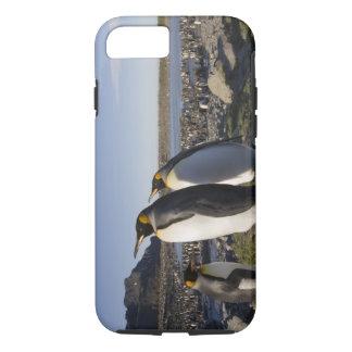 Antarctica, South Georgia Island (UK), King 6 iPhone 8/7 Case