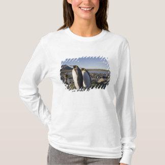 Antarctica, South Georgia Island (UK), King 6 T-Shirt