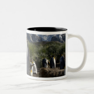 Antarctica, South Georgia Island (UK), King 7 Two-Tone Coffee Mug