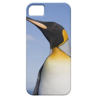 Antarctica, South Georgia Island (UK), Portrait Case For The iPhone 5