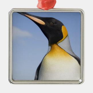 Antarctica, South Georgia Island (UK), Portrait Christmas Ornament