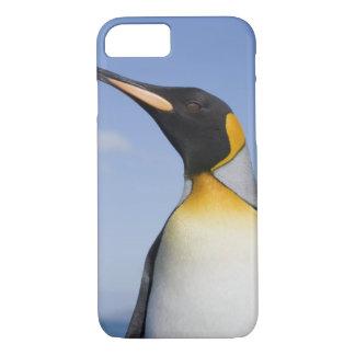 Antarctica, South Georgia Island (UK), Portrait iPhone 8/7 Case
