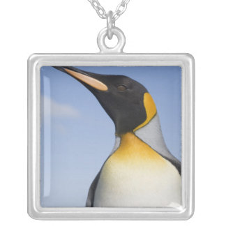 Antarctica, South Georgia Island (UK), Portrait Silver Plated Necklace