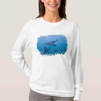 Antarctica, South Georgia Island (UK), T-Shirt