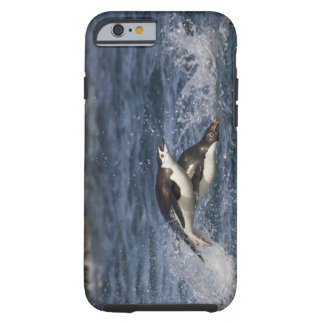 Antarctica, South Shetland Islands, Gourdon Tough iPhone 6 Case