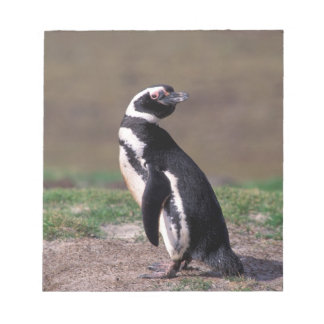 Antarctica, Sub-Antarctic Islands, South 2 Notepad