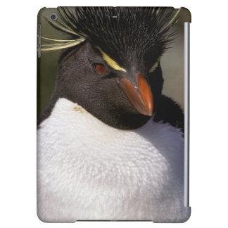 Antarctica, Sub-Antarctic Islands, South 5