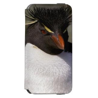 Antarctica, Sub-Antarctic Islands, South 5 Incipio Watson™ iPhone 6 Wallet Case