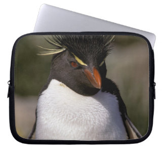 Antarctica, Sub-Antarctic Islands, South 5 Laptop Sleeve