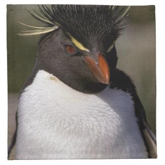 Antarctica, Sub-Antarctic Islands, South 5 Napkin