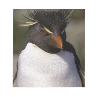 Antarctica, Sub-Antarctic Islands, South 5 Notepad