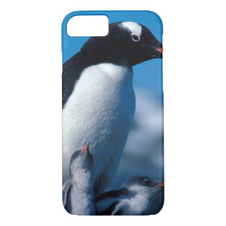 Antarctica, Sub-Antarctic Islands, South iPhone 8/7 Case