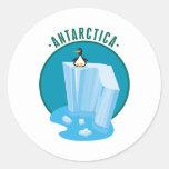 antartica penguin design classic round sticker