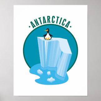 antartica penguin design poster