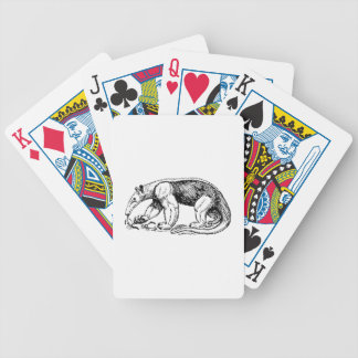 Anteater Bicycle Card Deck