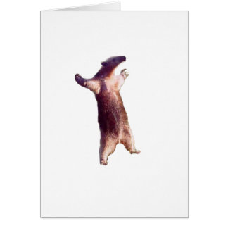 Anteater Card
