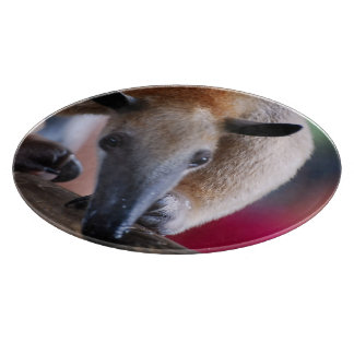 Anteater Cutting Boards