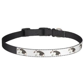 Anteater Dog Collar