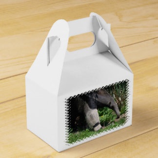 Anteater Favor Box