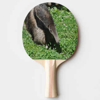 Anteater Ping Pong Paddle