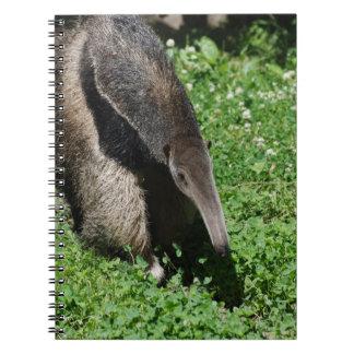 Anteater in Field Spiral Notebook