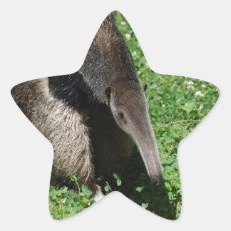 Anteater in Field Star Sticker