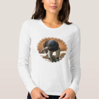 Anteater Ladies Long Sleve T-Shirt
