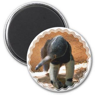 Anteater Magnet Magnet