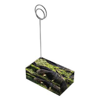 Anteater Table Card Holder