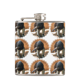Anteater Flask