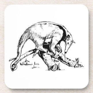 Anteaters Coasters