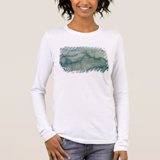 Antelope and bison, Perigordian (cave painting) Long Sleeve T-Shirt