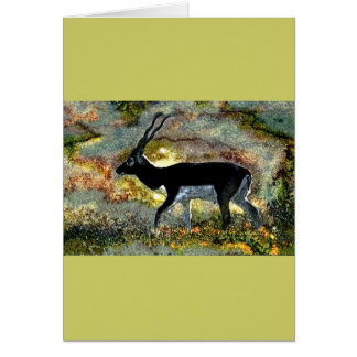 Antelope Blackbuck from Junglewalk.com Card