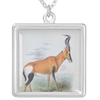 Antelope, from 'The Book of Antelopes', Silver Plated Necklace