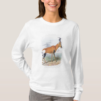 Antelope, from 'The Book of Antelopes', T-Shirt