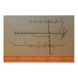 Antenna of old TV Wood Canvases
