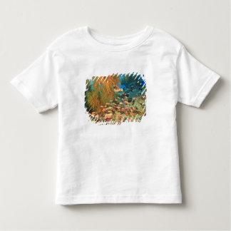 Anthias fish and black coral, Wetar Island, Toddler T-Shirt