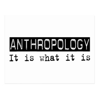 Anthropology It Is Postcard