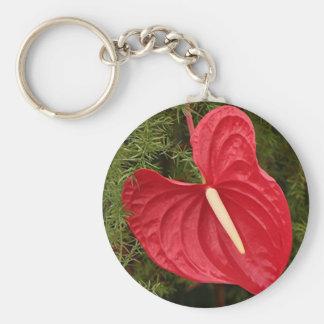 Anthurium flower in bloom basic round button key ring
