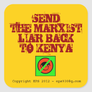 Anti Obama Square Sticker