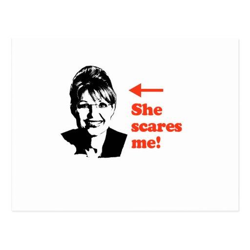 ANTI-PALIN / She scares me Postcard