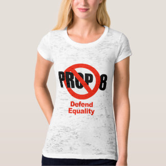 ANTI PROP 8 - Defend Equality Tees