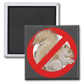 Anti-Squirrel Square Magnet