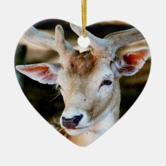 Antigua Fallow Deer Christmas Ornaments