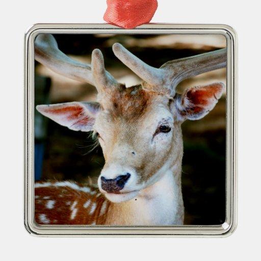 Antigua Fallow Deer Ornament